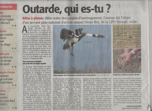 Article outarde ML 20-07-2015